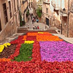 temps-de-flors-festival-de-les-flors-a-girona
